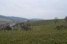 Bauernhof_15