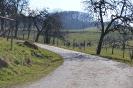Bauerhof / крестьянская усадьба 2013